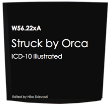 Struck by Orca | Funny ICD-10 Codes